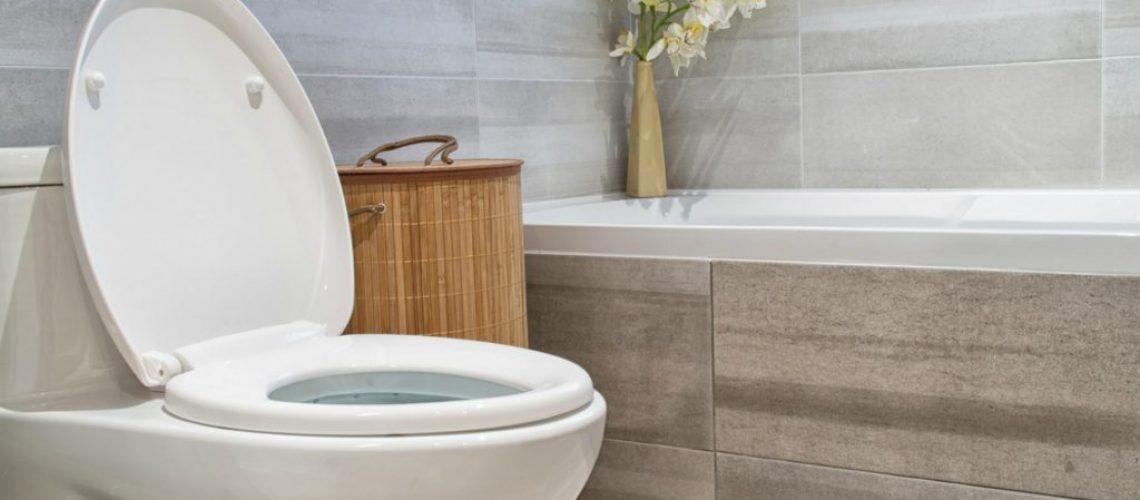 leaking toilet cistern